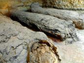 Descubren 17 momias en una tumba en el centro de Egipto
