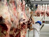 Minerva Foods exportará carne desde Colombia