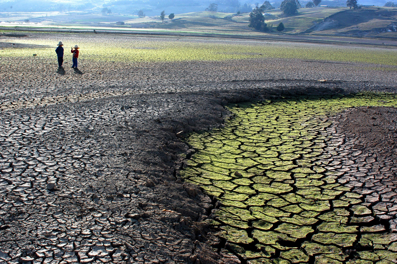 Cómo El Cambio Climático Está Afectando